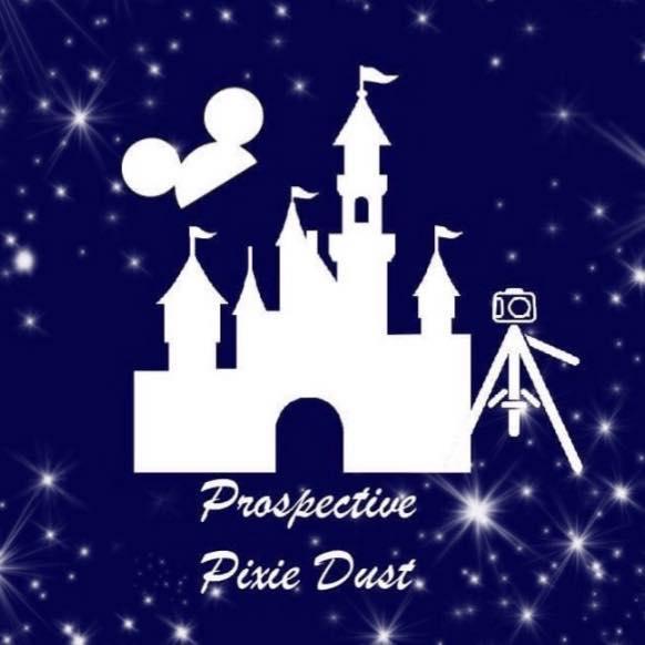 Disney Chat With Pixie Dust Fan